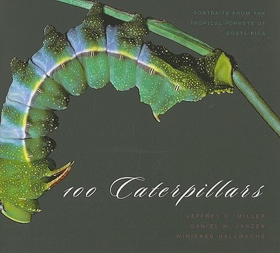 100 Caterpillars: Portraits from the Tropical Forests of Costa Rica - Miller, Jeffrey C, and Janzen, Daniel H, and Hallwachs, Winifred