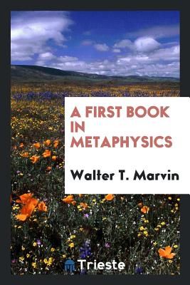 A First Book in Metaphysics - Marvin, Walter T