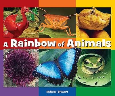 A Rainbow of Animals - Stewart, Melissa