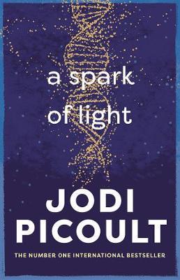 A Spark of Light - Picoult, Jodi