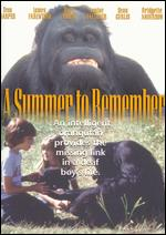 A Summer to Remember - Robert Michael Lewis