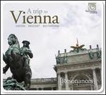 A Trip to Vienna