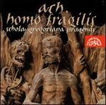 Ach, Homo Fragilis