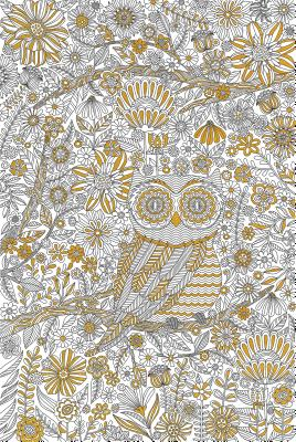 Adult Coloring Poster: Owl Town - Peter Pauper Press, Inc (Creator)