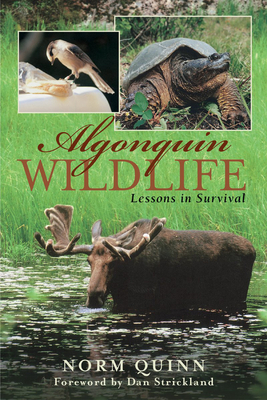 Algonquin Wildlife: Lessons in Survival - Quinn, Norm, and Strickland, Dan (Foreword by)