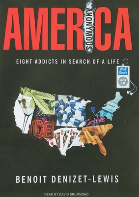 America Anonymous: Eight Addicts in Search of a Life - Denizet-Lewis, Benoit