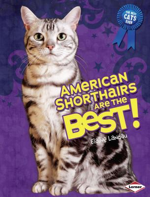 American Shorthairs Are the Best! - Landau, Elaine