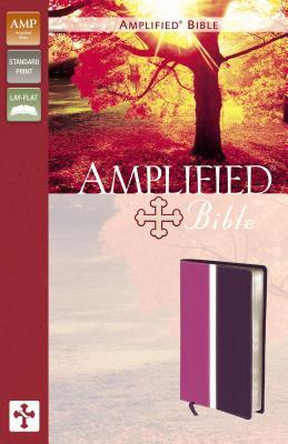 Amplified Bible-Am - Zondervan