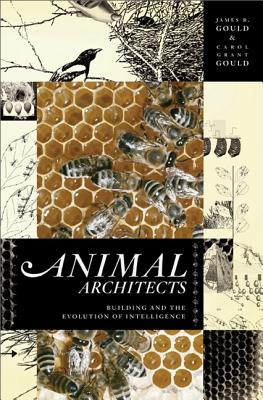 Animal Architects: Building and the Evolution of Intelligence - Gould, James L, and Gould, Carol Grant