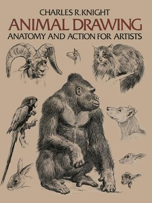 Animal Drawing: Its Origins, Ancient Forms and Modern Usage - Knight, Charles