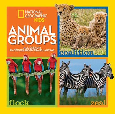 Animal Groups - Esbaum, Jill