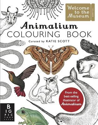 Animalium Colouring Book - Baker, Kate