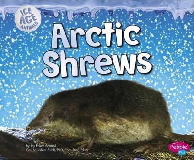 Arctic Shrews - Frisch-Schmoll, Joy