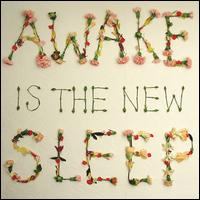 Awake Is the New Sleep - Ben Lee