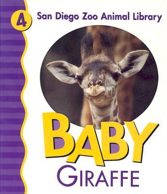 Baby Giraffe - San Diego Zoo