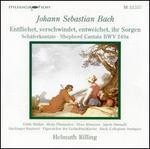 Bach: Entfliehet, verschwindet, entweichet, ihr Sorgen - Sch�ferkantate, BWV 249a