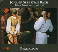 Bach: Missae Breves BWV 233 & 236 - Christian Immler (bass); Emilianó Gonzalez Toro (tenor); Eugénie Warnier (soprano); Quentin Blumenr?der (organ);...