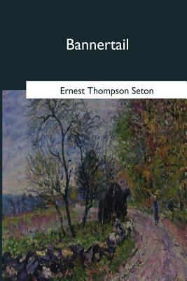 Bannertail: The Story of a Graysquirrel - Seton, Ernest Thompson
