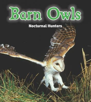 Barn Owls: Nocturnal Hunters - Rissman, Rebecca