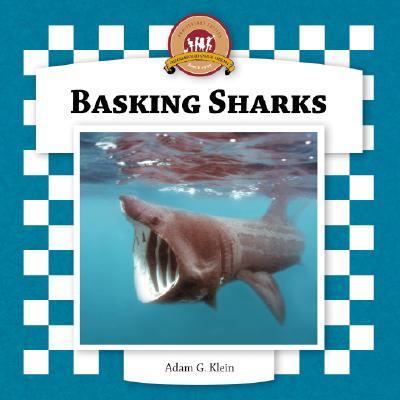 Basking Sharks - Klein, Adam G