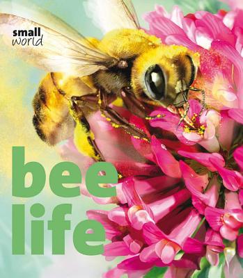 Bee Life - Evans, Lynette
