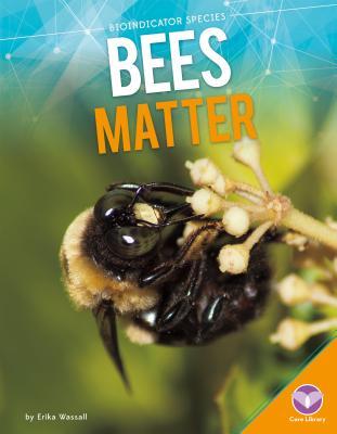 Bees Matter - Wassall, Erika