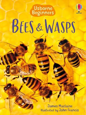 Bees & Wasps - Maclaine, James