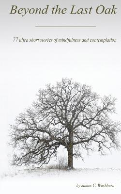 Beyond the Last Oak: 77 Ultra Short Stories of Mindfulness & Contemplation - Washburn, James C