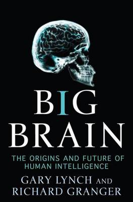 Big Brain: The Origins and Future of Human Intelligence - Lynch, Gary