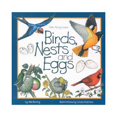 Birds, Nests & Eggs - Boring, Mel