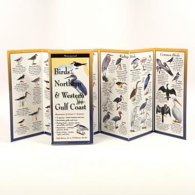 Birds of the Northern & Western Gulf Coast -