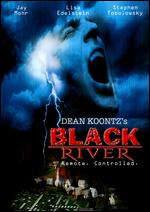 Black River - Jeff Bleckner