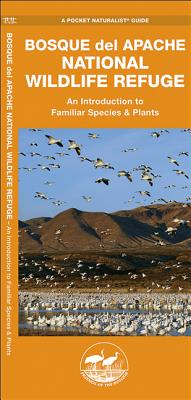 Bosque del Apache National Wildlife Refuge: An Introduction to Familiar Species & Plants - Kavanagh, James, and Kavanagh, J M, and Friends of the Bosque (Contributions by)
