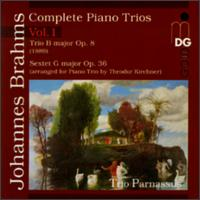 Brahms: Complete Piano Trios, Vol. 1 - Chia Chou (piano); Michael Gross (cello); Trio Parnassus; Wolf-Dieter Streicher (violin)