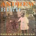 Break It Yourself - Andrew Bird