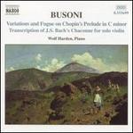 Busoni: Piano Music, Vol. 2