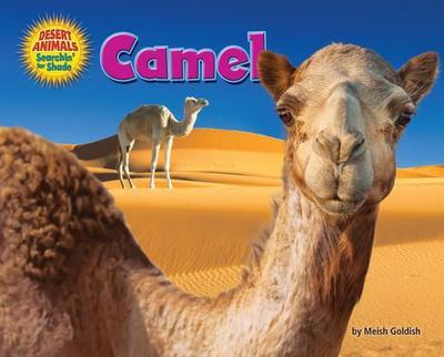 Camel - Goldish, Meish