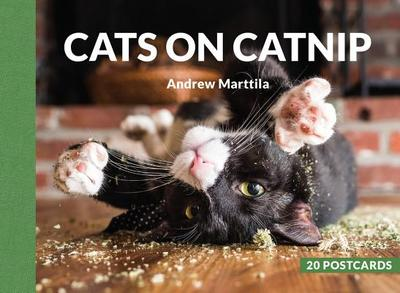 Cats on Catnip: 20 Postcards - Marttila, Andrew