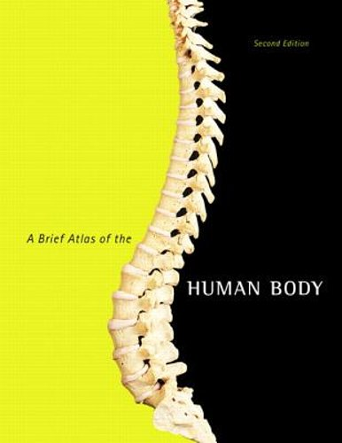 A Brief Atlas of the Human Body by Matt Hutchinson: New