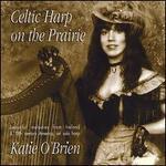 Celtic Harp on the Prairie