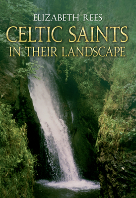 Celtic Saints In Their Landscape - Rees, Elizabeth