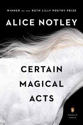 Certain Magical Acts - Notley, Alice