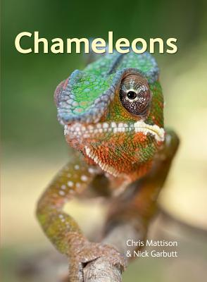 Chameleons - Mattison, Chris
