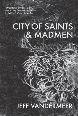 City of Saints and Madmen - VanderMeer, Jeff