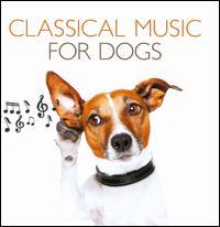 Classical Music for Dogs - András Schiff (piano); Arturo Benedetti Michelangeli (piano); Daria Hovora (piano); I Musici; Marisa Robles (harp);...