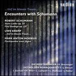 Encounters with Robert Schumann