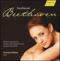 Transfigured Beethoven - Petronel Malan (piano)