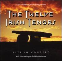 Live in Concert - The Twelve Irish Tenors