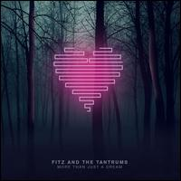 More Than Just a Dream - Fitz & the Tantrums