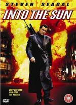 Into the Sun - mink